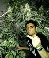 Nick Diaz missed his drug test, may be off the Strikeforce card