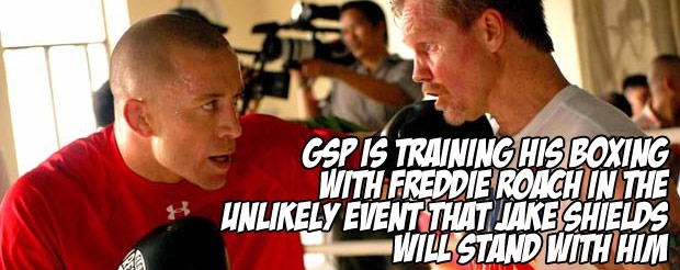 GSP is training his boxing with Freddie Roach in the unlikely event that Jake Shields will stand with him