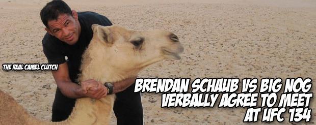 Brendan Schaub vs Big Nog verbally agree to meet at UFC 134
