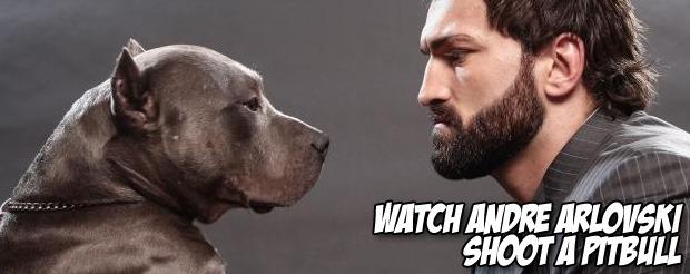Watch Andre Arlovski shoot a pitbull