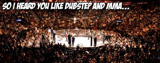 So I Heard You Like Dubstep and MMA…