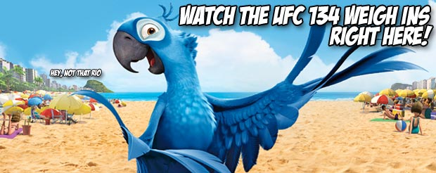 Watch the UFC 134 weigh ins right here!