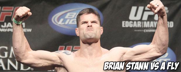 Brian Stann vs. a fly