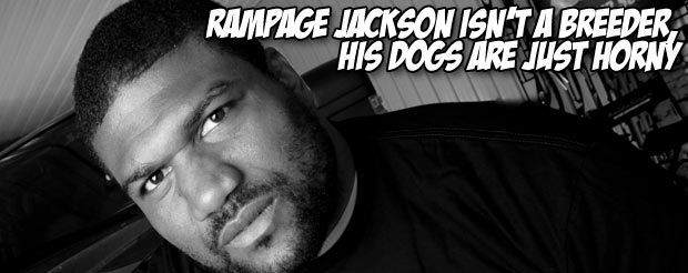 Rampage Jackson isn't a breeder, his dogs are just horny