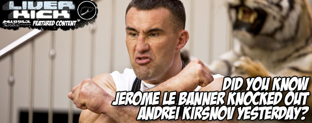 Did you know Jerome Le Banner knocked out Andrei Kirsnov yesterday?