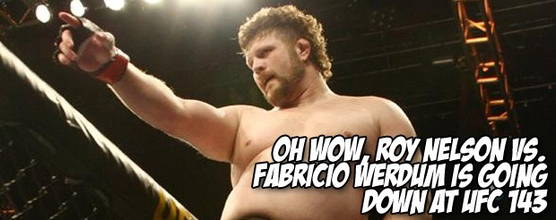 Oh wow, Roy Nelson vs. Fabricio Werdum is going down at UFC 143