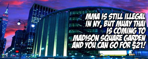 MMA is still illegal in NY, but Muay Thai is coming to Madison Square Garden and you can go for $21!