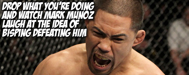 Drop what you're doing and watch Mark Munoz laugh at the idea of Bisping defeating him
