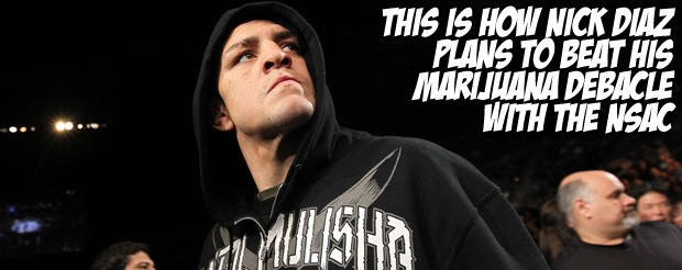 This is how Nick Diaz plans to beat his marijuana debacle with the NSAC