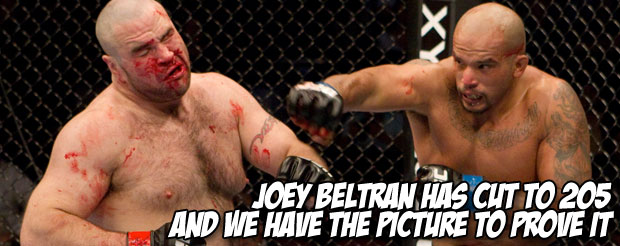 Joey Beltran has cut to 205, and we have the picture to prove it