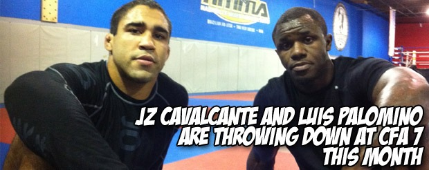 JZ Cavalcante and Luis Palomino are throwing down at CFA 7 this month