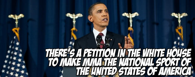 There's a petition in the White House to make MMA the national sport of the United States of America