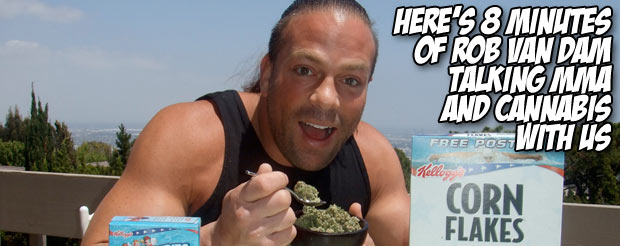 Here's 8 minutes of Rob Van Dam talking MMA and cannabis with us