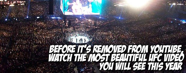 Before it's removed from YouTube, watch the most beautiful UFC video you will see this year