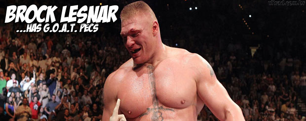 This video contains Frank Mir hypothesizing that Brock Lesnar got his chest tattoo to distract from his large, manly pecs