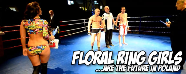 Watch the nastiest body punch to head kick KO you will ever see in your life