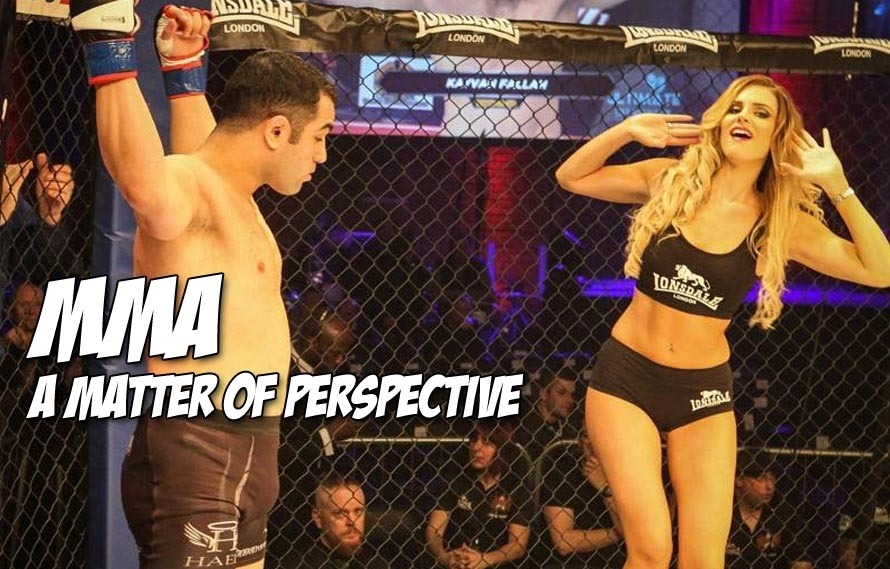 #WHOATV reminds us that the beauty of modern MMA is at least partly a matter of perspective