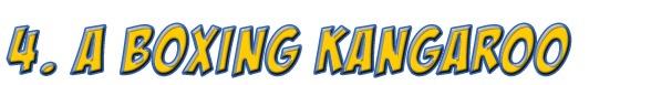 4Kangaroo