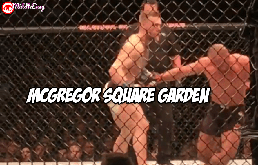 New cageside video shows off Conor McGregor's hand speed and the end of Eddie Alvarez at UFC 205