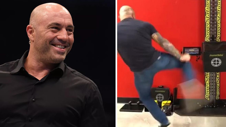 Joe Rogan's kick Is More Stronger Than Francis Ngannou's Punch
