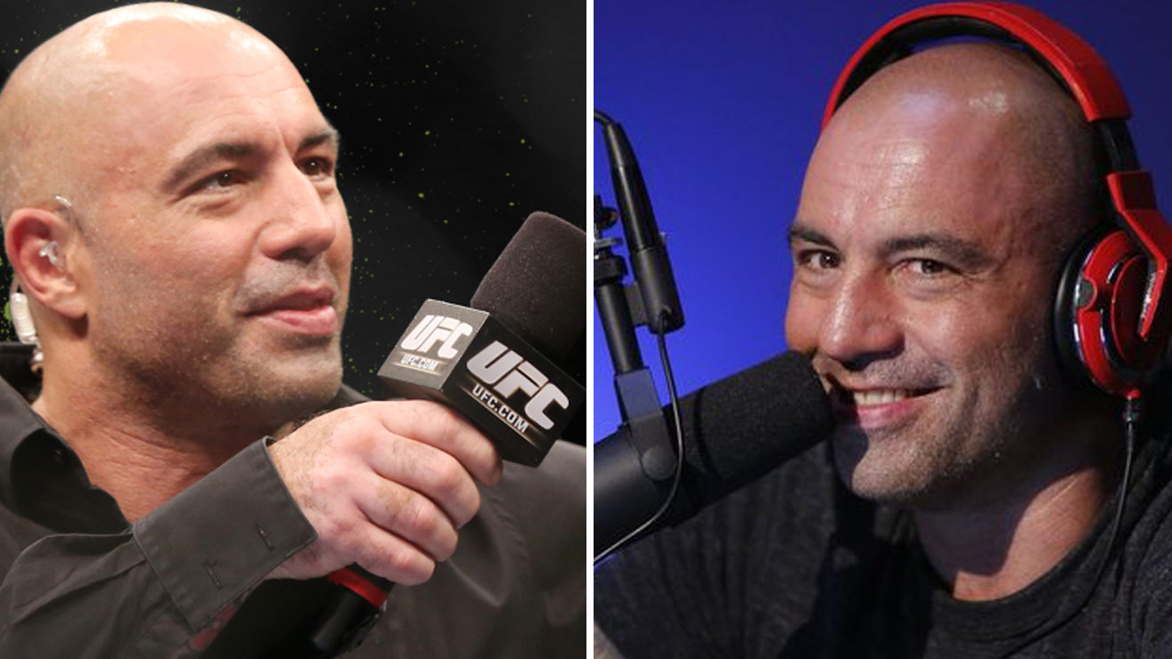 Joe Rogan - From UFC Announcer To Psychedelic Commentary Superstar