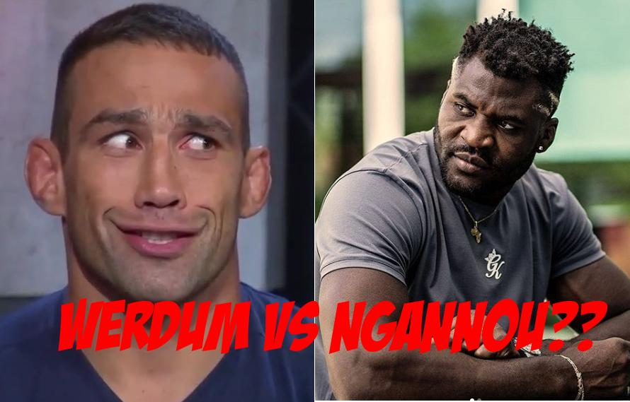 Fabricio Werdum Calls Out Ngannou: 'I Finish Him!' – MiddleEasy.com