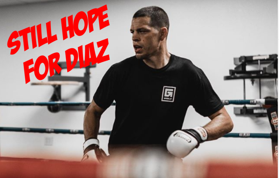 Nate Diaz Not Suspended, Could Still Fight At UFC 244