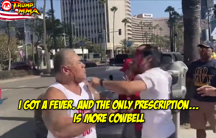 Trump MMA: MAGA guy versus protester dude leads to bloody cowbell fight