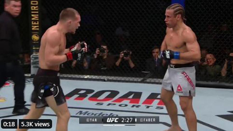 UFC 245 Results: Petr Yan High Kicks Urijah Faber To Sleep (Highlights)