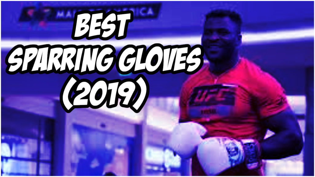 The Best Gloves for Sparring Reviewed (2020)