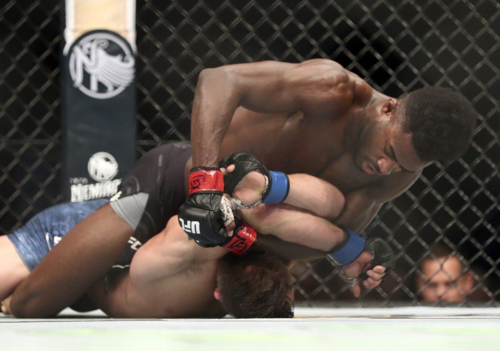 image of Aljamain Sterling via @UFC on Twitter