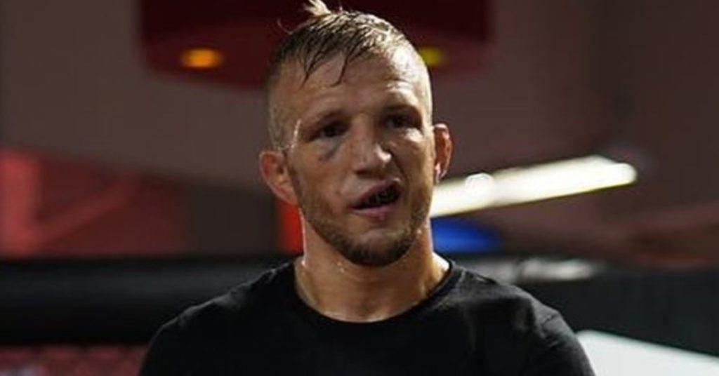 TJ Dillashaw Responds To Jose Aldo Callout Following UFC Vegas 17