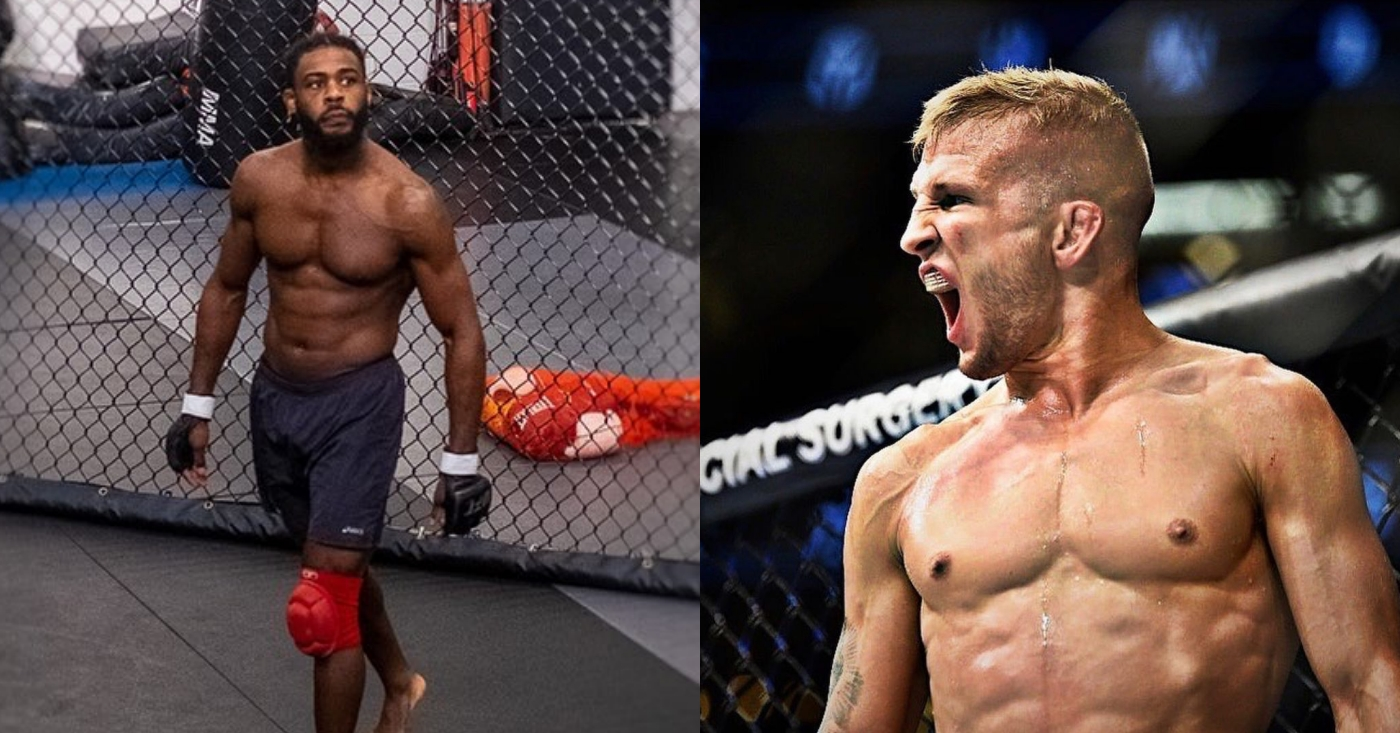 Aljamain Sterling: Giving 'Cheater' TJ Dillashaw An Immediate Title Shot 'Sets A Bad Precendent'